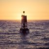 buoys and markers